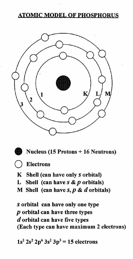 Phosphorus Chemistry Introduction